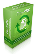 protect_file_pro